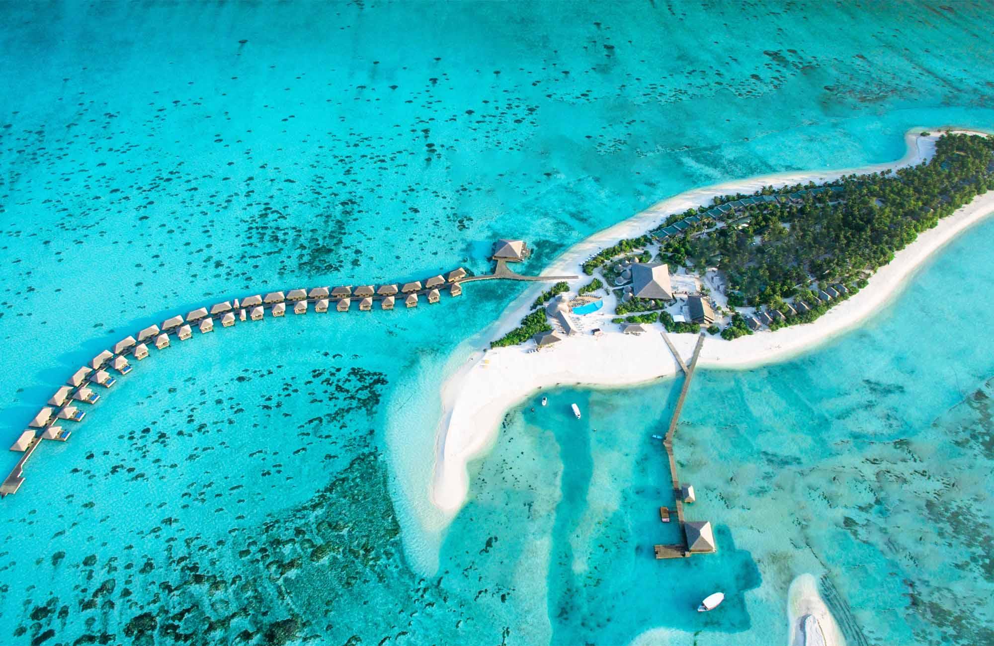 Will Cocoon Maldives score a World Luxury Restaurant Award?