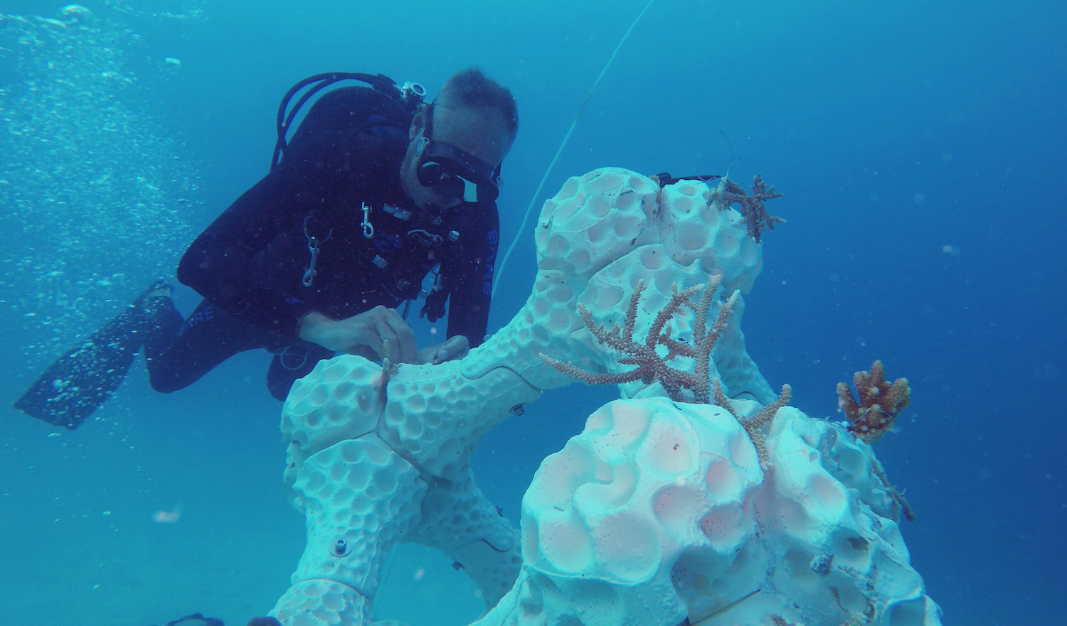 Summer Island Maldives' 3D reef makes its way to the Guinness list of world records