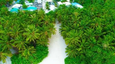 MALDIVES LOCAL VILLAGE